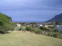 Homington Cottage Noordhoek