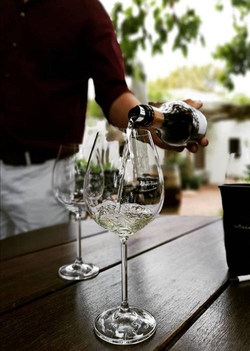 vinprovning i franschhoek