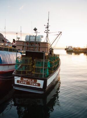 Kalk Bay harbour by Tim Johnson from unsplash